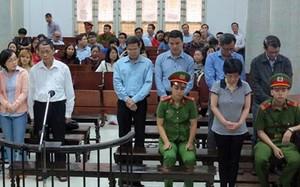 Cựu đại biểu Quốc hội Châu Thị Thu Nga gửi đơn kháng cáo kêu oan