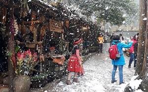 Đón Giáng sinh trong mưa tuyết Sa Pa, tại sao không?