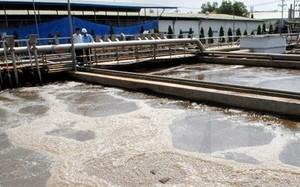 Video mục sở thị ống xả thải của Formosa dưới đáy biển Vũng Áng