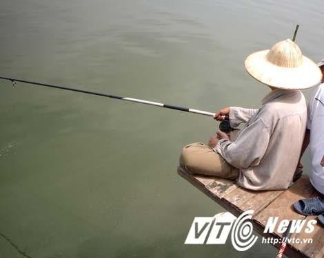 """""""Khung long"""" Ho Tay da tiet chung?-Hinh-3"""