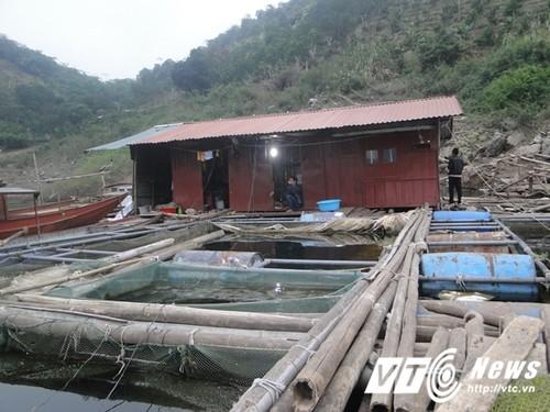 "Canh kho tan cung cua ""chi Dau"" o ho Thuy dien Hoa Binh"