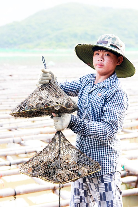 Can canh nghe nuoi trai thu bac trieu o Khanh Hoa-Hinh-3