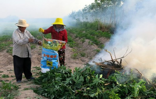 Benh la va nguy hiem: Kham la mi lay lan chong mat o Tay Ninh-Hinh-2