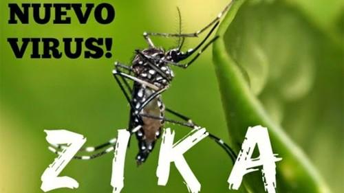Be 4 thang tuoi o Dak Lak nghi mac chung dau nho do Zika