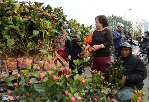 An tuong kho phai tet Viet trong long nguoi nuoc ngoai