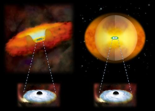 "Phat hien lo den ""quai vat"" trong thien ha xoan oc NGC 7674-Hinh-3"