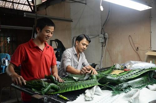 "Sung sot tham canh hang van con ca sau doi la ""cho chet""-Hinh-2"