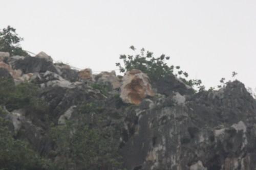 Noi so hai kinh hoang sau tieng no min pha da o Hai Duong-Hinh-4