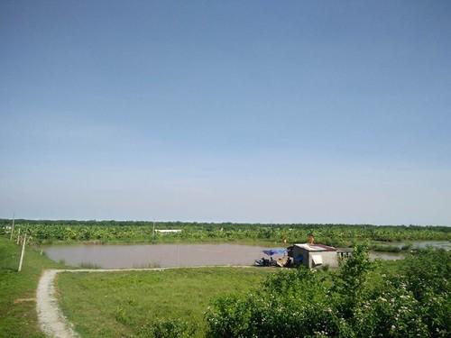Hai Phong: Dieu tra nhom con do no sung vao nguoi trong dam tom