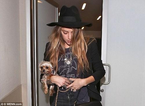 Johnny Depp va Amber Heard chia tai san sau ly hon