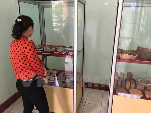 Ket qua tham do tim dau vet lang mo vua Quang Trung-Hinh-2