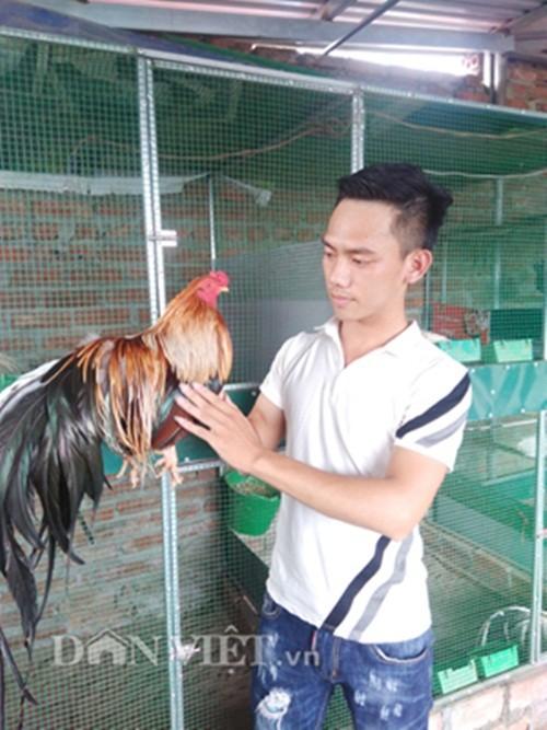 Chieu la: Chai long, vuot duoi cho ga kieng thanh trieu phu-Hinh-3