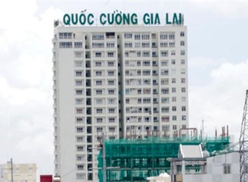 Sau dai hoi co dong, co phieu Quoc Cuong Gia Lai con tang?-Hinh-2
