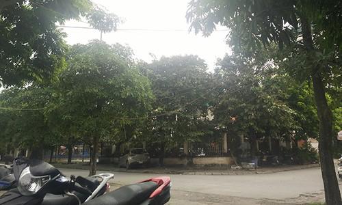 """Bai xe o to khong phep """"moc"""" gan tru so, UBND phuong Phuc La khong biet?-Hinh-4"""