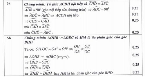 TP HCM cong bo dap an ky thi tuyen sinh vao lop 10-Hinh-4