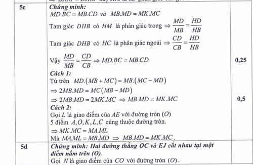 TP HCM cong bo dap an ky thi tuyen sinh vao lop 10-Hinh-5