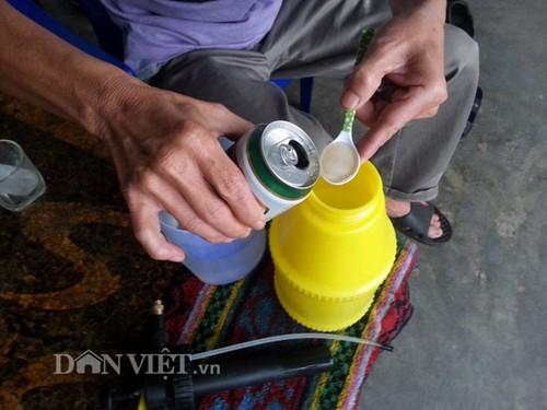 """Het hon"" chieu trong rau sach doc di cua nong dan Viet-Hinh-6"