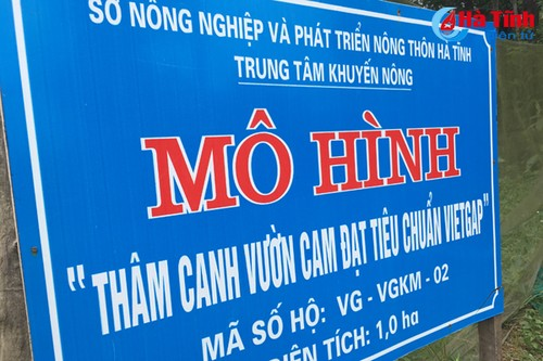 """Vua"" cam mach nuoc nguoi tieu dung chon dung cam Khe May-Hinh-3"