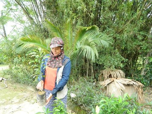 """Trong phai cam """"dai"""", ban re chang ai mua, cho khong ai lay-Hinh-3"""