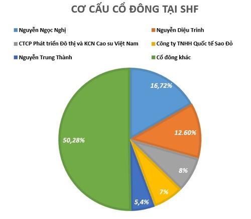 Lo hang chuc ty dong, bau Hien ban toan bo von tai SHF-Hinh-2