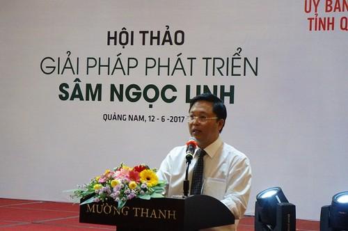 "Sam Ngoc Linh quy nhat the gioi ""de ra vang"" nhu the nao?"
