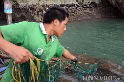 Tan mat thay cao thu san con cu ky nuc tieng Bai Tu Long-Hinh-9