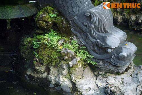 Can canh tuyet tac dai phun nuoc co nhat Ha Noi-Hinh-10