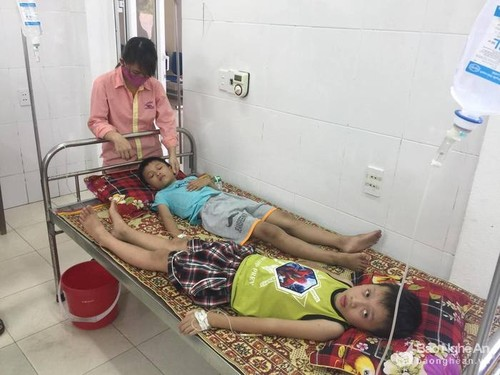 Cua Lo: Hon 50 hoc sinh ngo doc vi an qua ngo dong