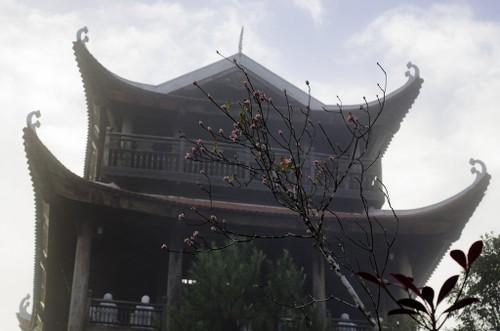 Du xuan len dinh Ba Na ngam dao chuong-Hinh-4