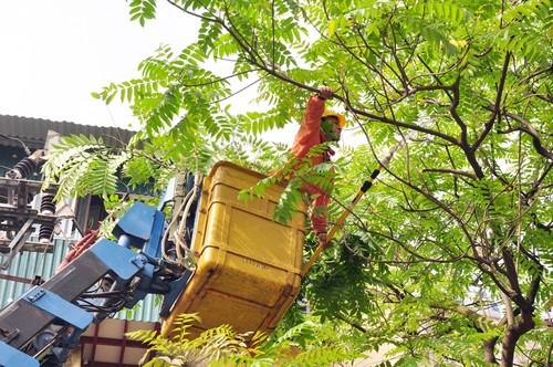 Dam bao an toan dien trong mua mua bao-Hinh-2