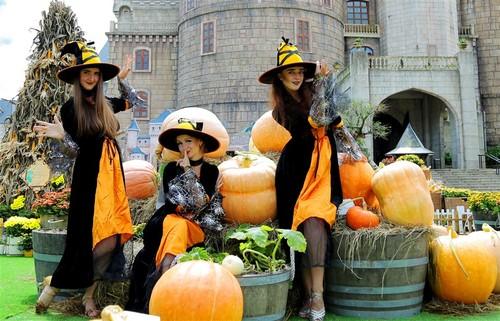 Hon 10 tan bi, ngo, tao trang tri Halloween Sun World Ba Na Hills
