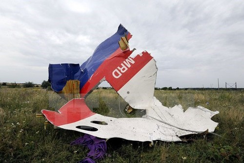 Ha Lan se cong bo ket luan vu tham kich MH17 vao 13/10