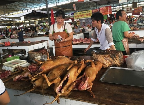 Le hoi thit cho Ngoc Lam van dien ra bat chap tin don cam ban-Hinh-3
