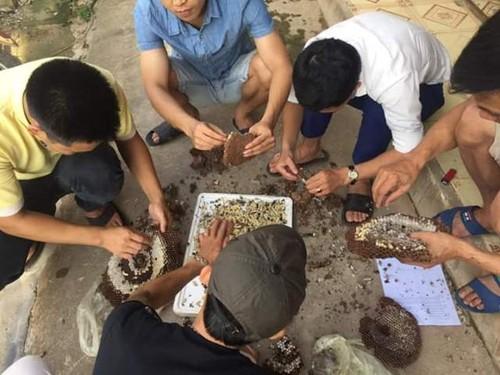 Nghe An: Dan do xo bat ong dat ban cho thuong lai Trung Quoc