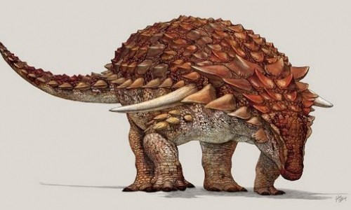 Khung long ankylosaurs dung mau da de nguy trang tron ke thu