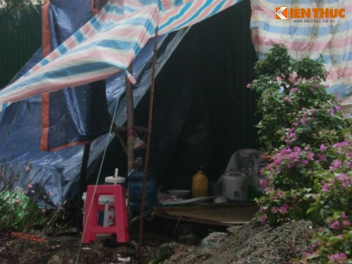 Dung leu, dot lua trong cay canh Tet trong dem mua lanh-Hinh-12