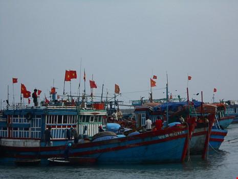 Hang tram tau danh ca hoi ha re song ra khoi Hoang Sa-Hinh-3