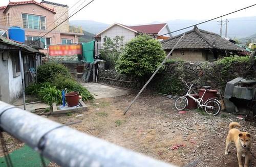 Dan Han do xo tham nha cu xap xe cua tong thong-Hinh-4