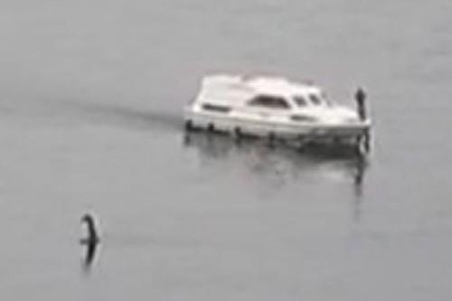 Video quai vat ho Loch Ness xuat hien, ngoc dau giua long ho?