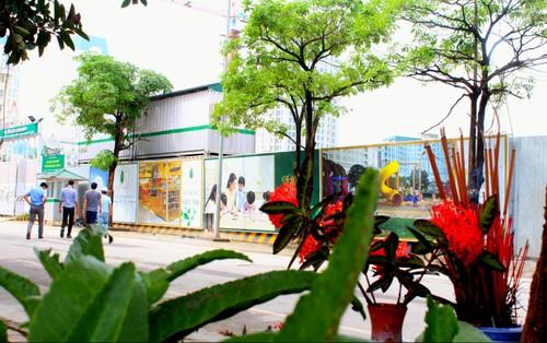 Ta hoa chung cu The Emerald My Dinh view bai tha ma truc dien-Hinh-2