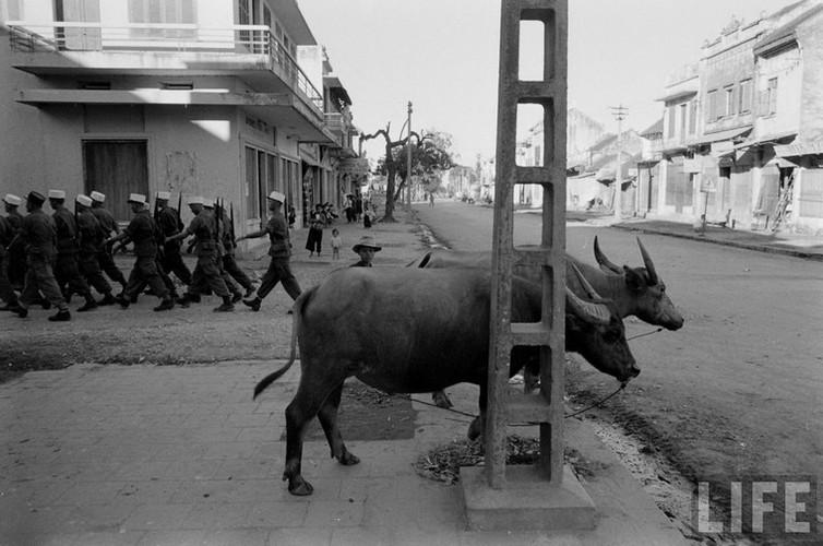 Tan muc linh Phap cuon co rut khoi Ha Noi nam 1954-Hinh-10