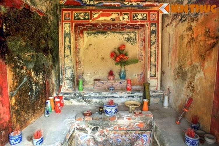Hoang phe ngoi den co chi chit vet dan o Da Nang-Hinh-8