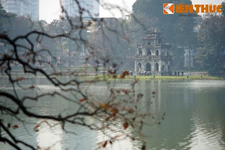 Top thanh pho nhieu cay xanh nhat Viet Nam-Hinh-7