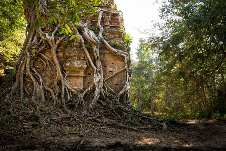 Kham pha Di san the gioi moi toanh cua Campuchia-Hinh-7