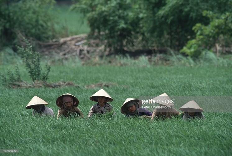 Hinh anh de doi ve phu nu Viet Nam thap nien 1990 (1)-Hinh-9