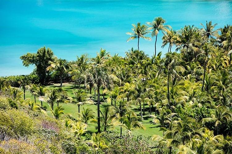 Choáng ngợp với khu biệt thự cực sang bên bờ biển Caribbean - Ảnh 3
