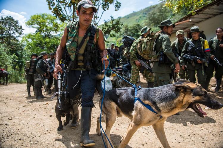 Chum anh moi nhat ve cac chien binh FARC thoi binh-Hinh-10