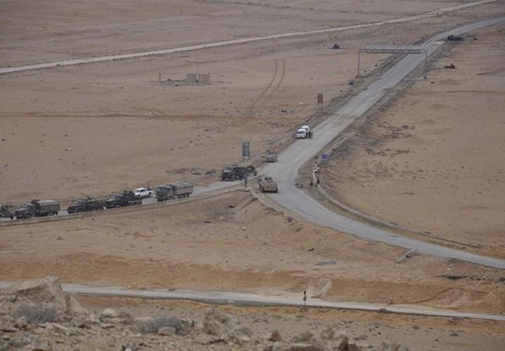 Ben trong thanh pho co Palmyra moi giai phong khoi IS-Hinh-2