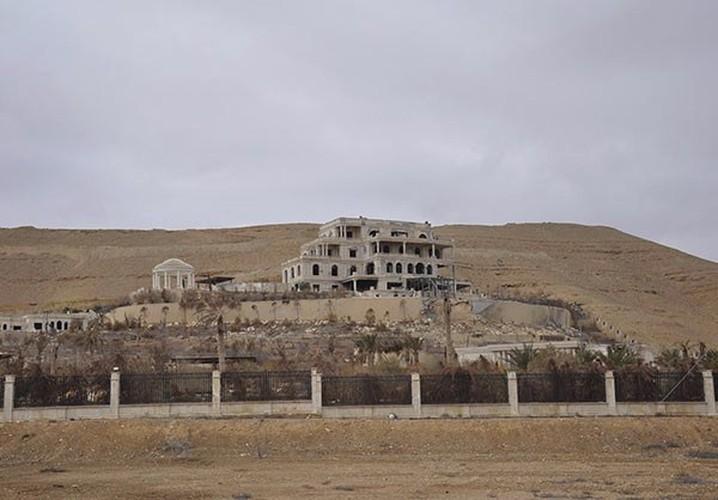 Ben trong thanh pho co Palmyra moi giai phong khoi IS-Hinh-3