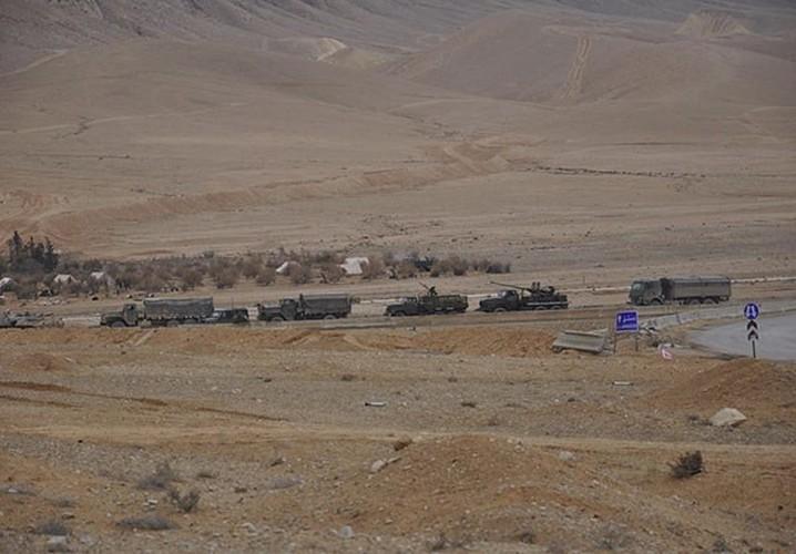 Ben trong thanh pho co Palmyra moi giai phong khoi IS-Hinh-8